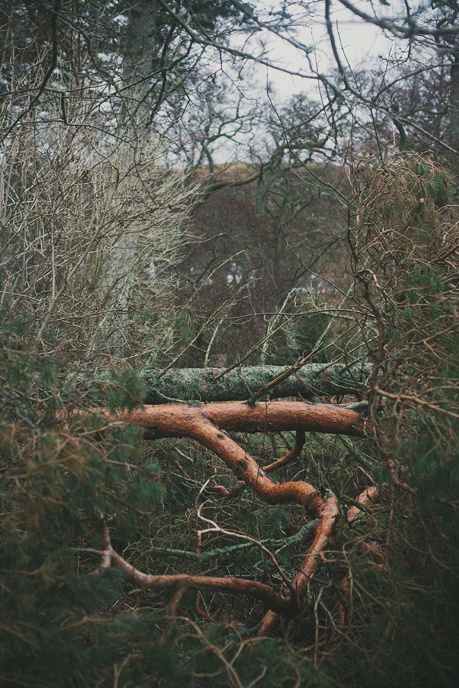 artistic_uig_isle_skye_photography_scotland-13