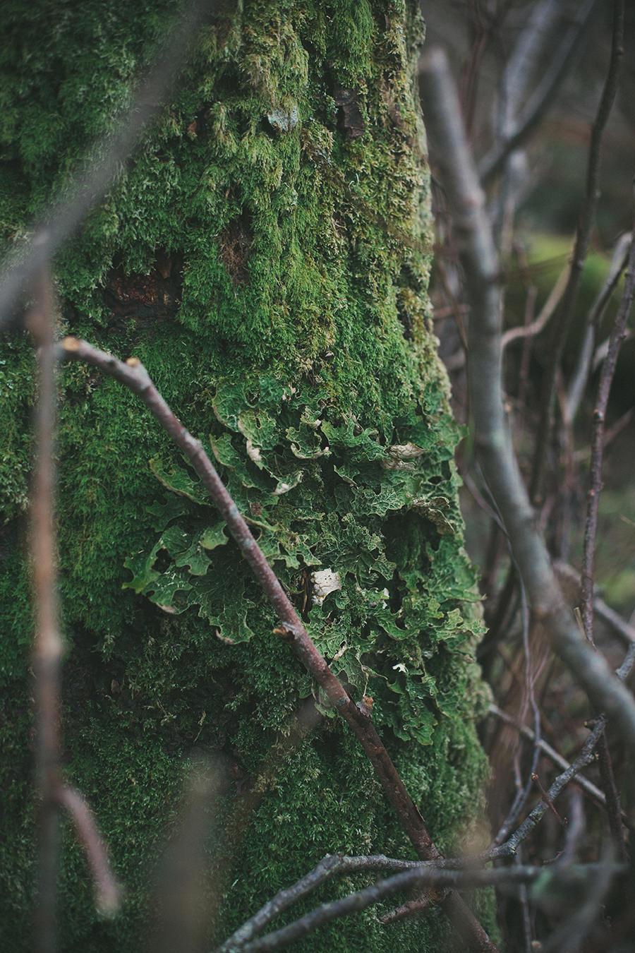 artistic_uig_isle_skye_photography_scotland-18