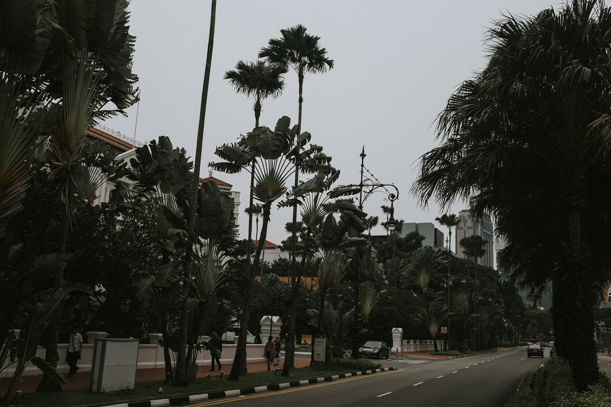 singapore-2015-maureen-du-preez-012