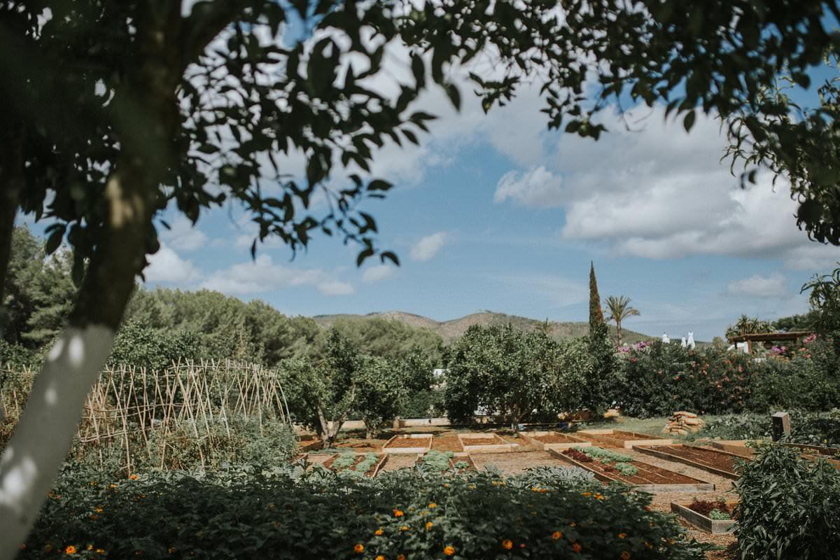 atzaro ibiza farmstay