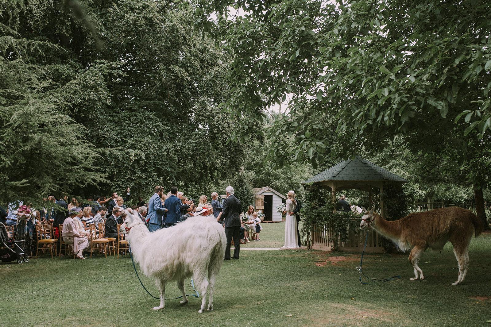 natural wedding somerset