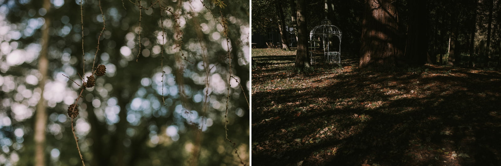 artistic woodland wedding photography